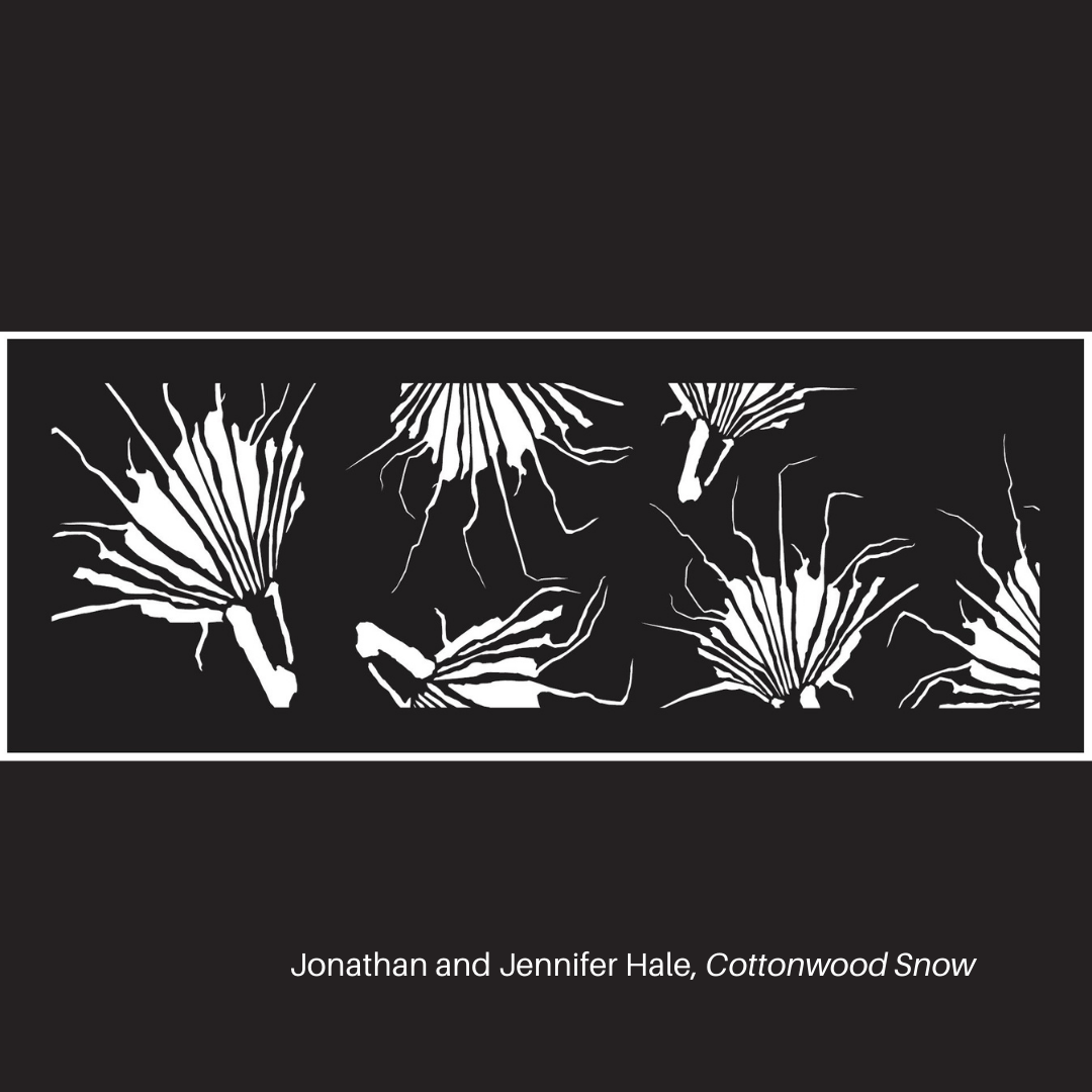 Cottonwood Snow by Jonathan and Jennifer Hale